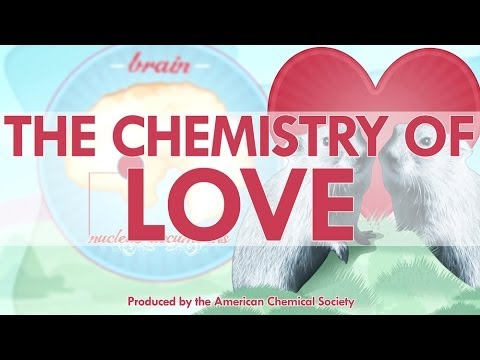 Love explained chemically