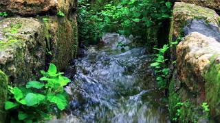 1 Hour of Nature Waterfall Relaxation Sound-Sleep Sound-Background for Relaxation & Meditation