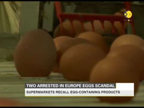 2 arrested by Dutch investigators in insecticide tainted eggs scandal