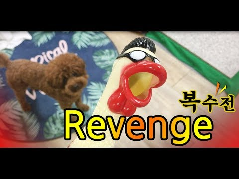 Learn colors Revenge 복수전 learn english word kids video funny video funny dog_딘이누나♥#165