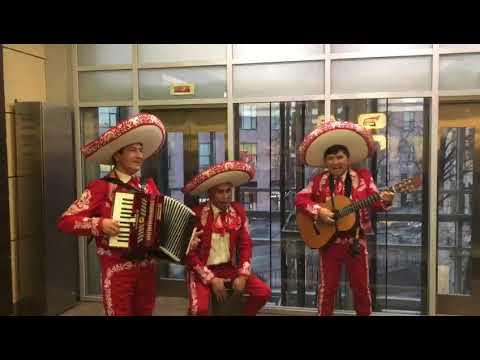 Мексиканцы мариачи на праздник