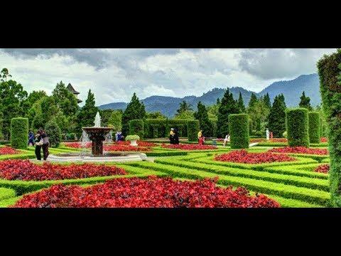 obyek-wisata-taman-bunga-nusantara-2019