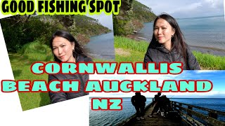 CORNWALLIS BEACH AUCKLAND NZ GOOD FISHING SPOT