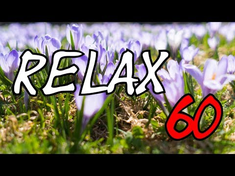 RELAX - 1 hour The Alps, birds singing, spring, sun, lust for life, relaxation, 4K