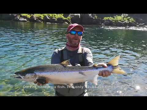 Salmon Fishing In Norway & Iceland 2018