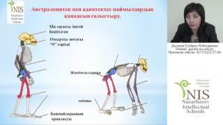 Уральск NIS Онлайн Урок Биология 09.03.2016г.