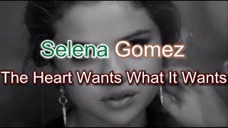 Selena Gomez The Heart Wants What It Wants Karaoke Cover [Firecat Release]