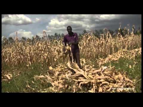 Gaggia Caffe TV - Riziki Children's Home Kenya