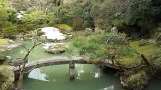 京都の庭園 青蓮院 The Garden of Kyoto Shoren-in Temple. Full HD
