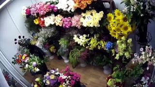 Онлайн витрина! Парад Цветов!