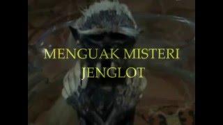 MISTERI JENGLOT (MYSTERY jenglot)
