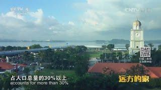 遠方的家 奮斗在新山 CCTV 2016