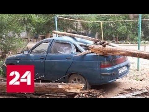 в-астрахани-ликвидируют-последствия-урагана-россия-24