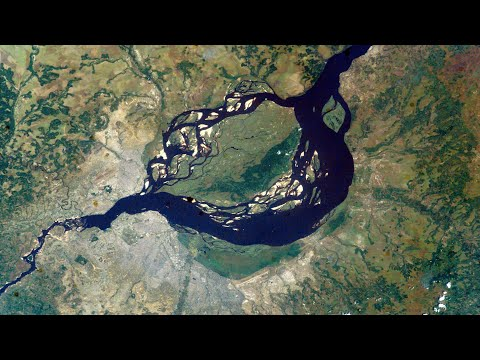 How Dead Fish Revealed Congo As The Deepest River On Earth