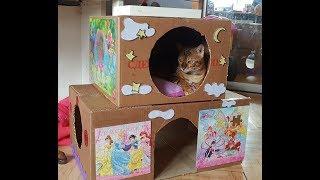 Домик для кошки/ дом из картона/кошкин дом