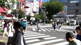 新宿で一番安い果物店? 신주쿠에서 가장 싼 과일가게? 新…