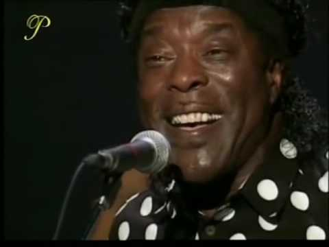 The Buddy Guy Big Band, Live At The Montreal Jazz Festival, 6th July 1997