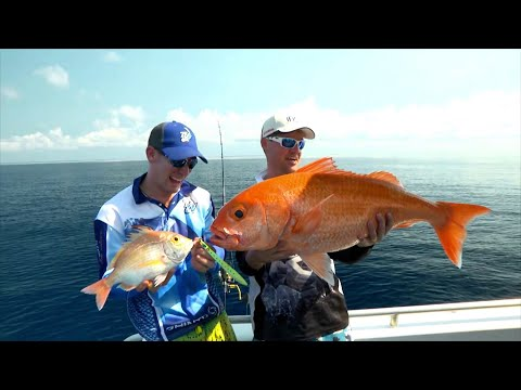 IFISH - Jigging For Ruby Snapper!