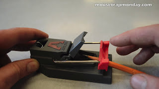 Victor Quick Kill Mouse Trap In Action. Full Review. mousetrapmonday