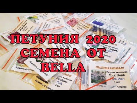 Профсемена, петуния 2020//Профессиональные семена петунии из магазина BELLA