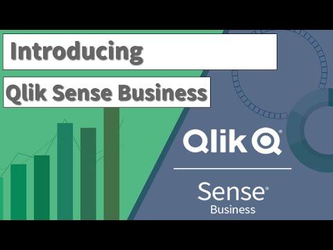 Introducing Qlik Sense Business