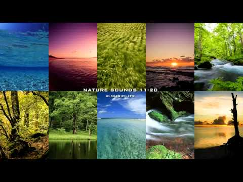 Nature Sound Collection 11-20 - Super Long Nature Sound 8hour -