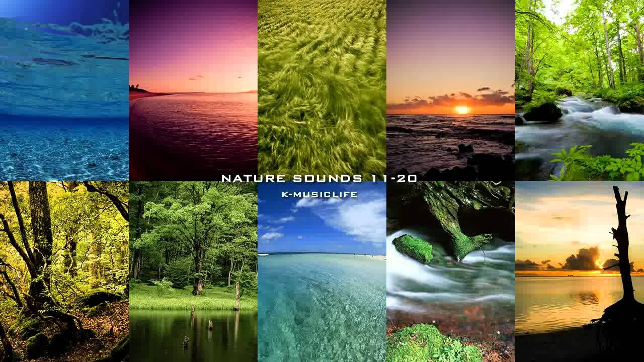 nature sound collection super