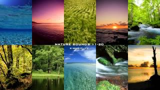 Nature Sound Collection 11-20 - Super Long Nature Sound 8hour -(Nature Sound Collection 11-20 - Super Long Nature Sound - almost 8 hour nature sound video. This is absolutely long nature sound you have never listened., 2012-06-03T06:14:13.000Z)