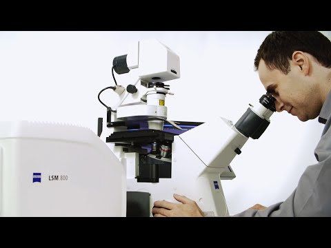 ZEISS LSM 800 with Airyscan: Product Trailer