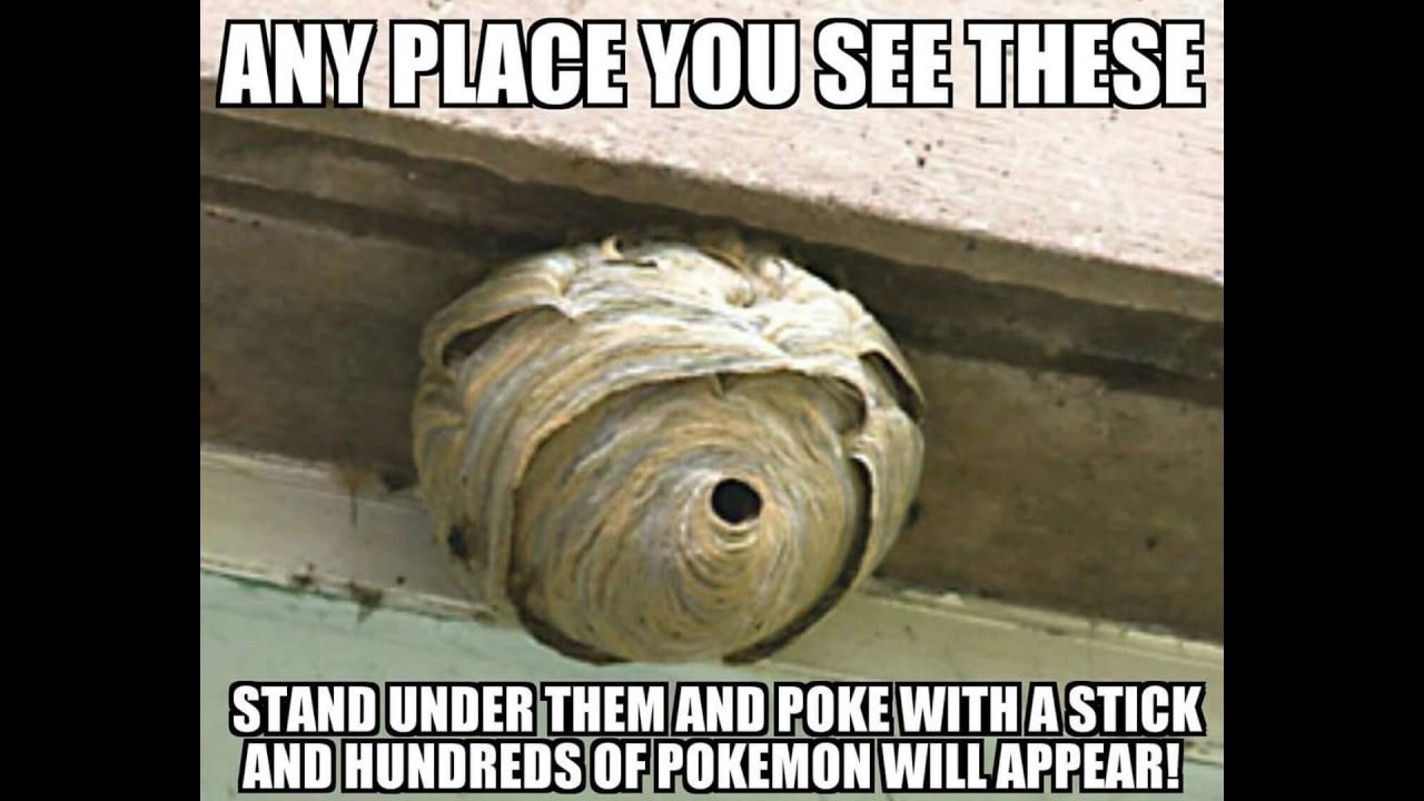 maxresdefault funny clean memes ii youtube