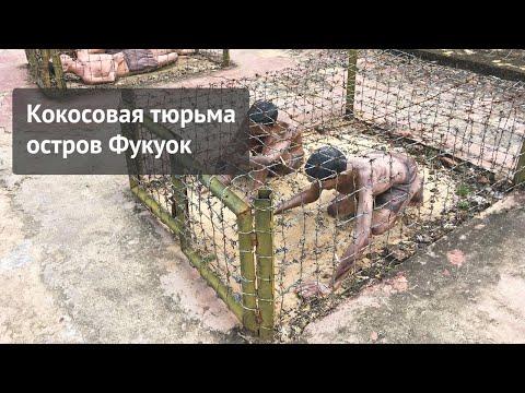 Кокосовая тюрьма на