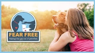 Fear Free: How Pet Owners Can Enjoy Veterinary Visits with Their Pets