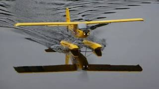 george s e flite timber at lily pond