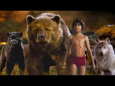 The Jungle Book 2016 - Best Scenes