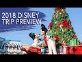 Walt Disney World New Years 2018 & Dopey Challenge Trip Preview