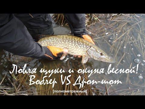 рыбалка на щуку весной на спиннинг на воблер