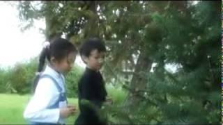 The Hung - Ngon nen sinh nhat