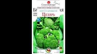 Семена капусты оптом(, 2013-05-04T12:31:13.000Z)