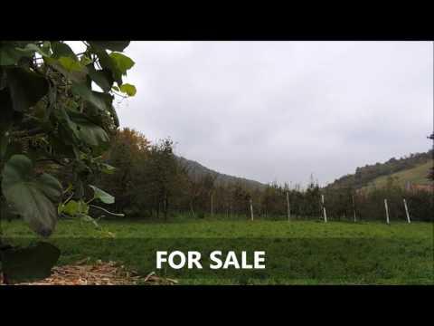 FOR SALE - Property near Sarajevo - Ilijas