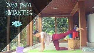Yoga para Iniciantes - Aula Completa I Yoga com Júlia Viegas
