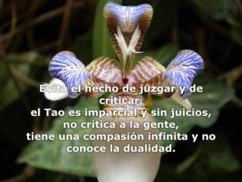 La sabiduría del silencio interno - texto taoísta - YouTube