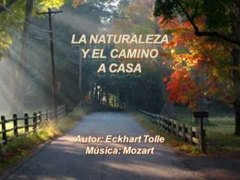 eckhart tolle books free pdf