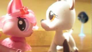 Littlest Pet Shop: Surf