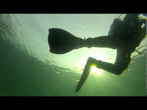Scuba Dive GoPro Video with Barnacle Bill in Seattle Washington
