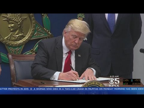 Santa Clara County Supervisors Vote To Sue Trump Over Immigration Order