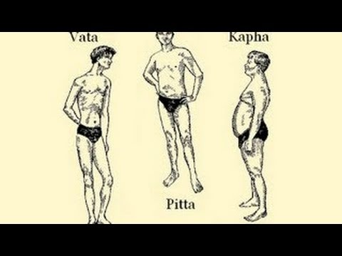 The Ayurvedic Body Types And Their Characteristics Vata Pitta Kapha Youtube