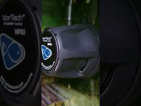 MP60QD ecotech that's the normal Noiselevel
