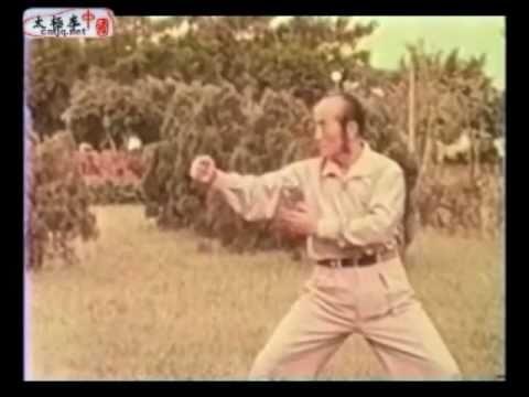 Wang ZhiHe Taijiquan - 王子和太極拳 part2/3