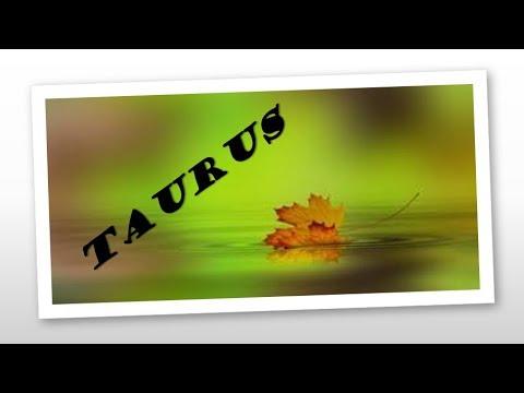TAURUS: Temperance