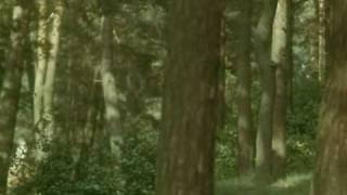 PURKUA PA песни из советских кинофильмов Боярский